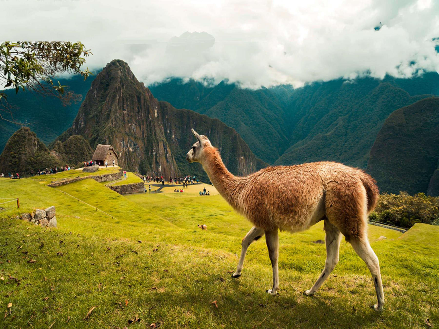 Special Inca Trail 5 Days / 4 Night